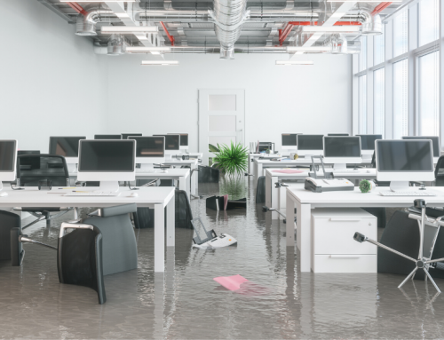 5 Things to Look For When Choosing an Emergency Flood Services Provider.